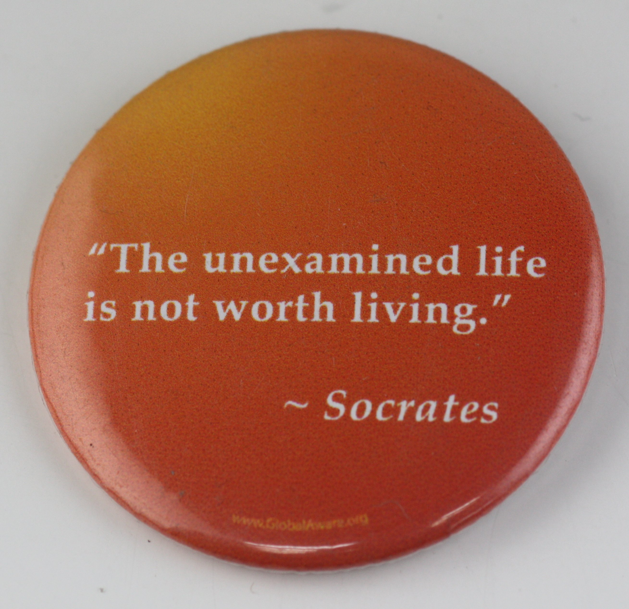 essay on socrates the unexamined life Free essay: socrates was considered by many to be the wisest man in ancient  greece while he was eventually condemned for his wisdom, his spoken words.